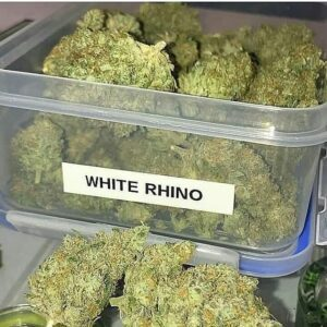 Buy White Rhino Kush