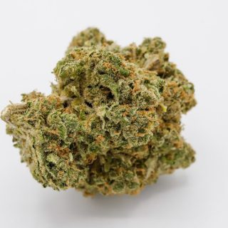 Buy Durban Poison Weed