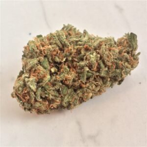 Buy Amnesia Haze Weed
