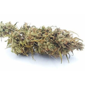 Buy Cannatonic Weed USA