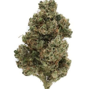Buy Ghost Train haze