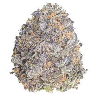 Mendocino Purps Weed Strain