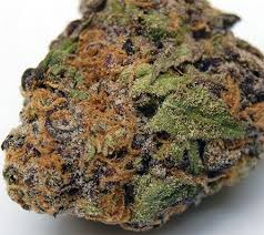 Buy lavender Marijuana USA