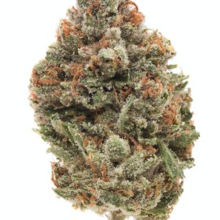Buy chemdawg Weed USA