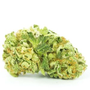 Buy Amnesia Lemon Weed Strain