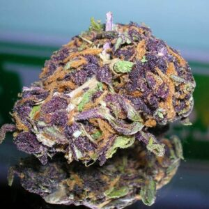Purple Trainwreck Weed Strain